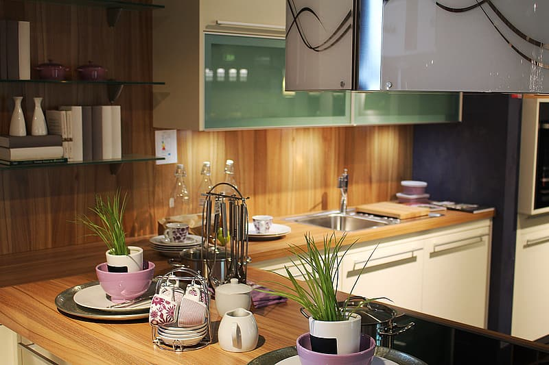 Two green leaf plants in white pots on brown wooden kitchen table