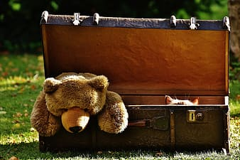 Brown bear plush toy on brown wooden chest