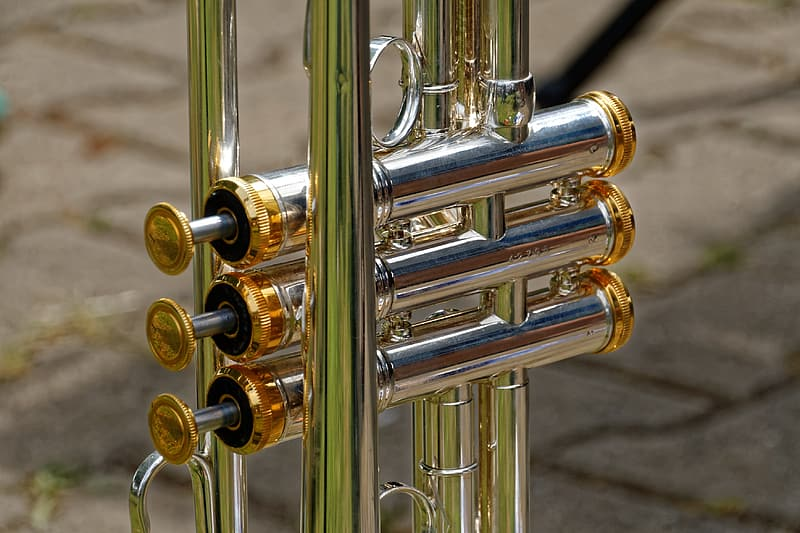 Silver and gold trumpet knob