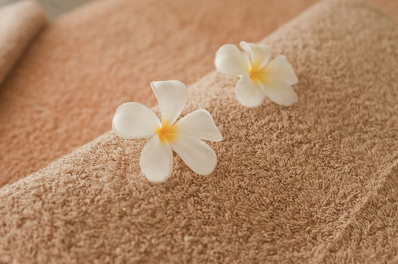 Two white 5-pelted flowers on brown textile