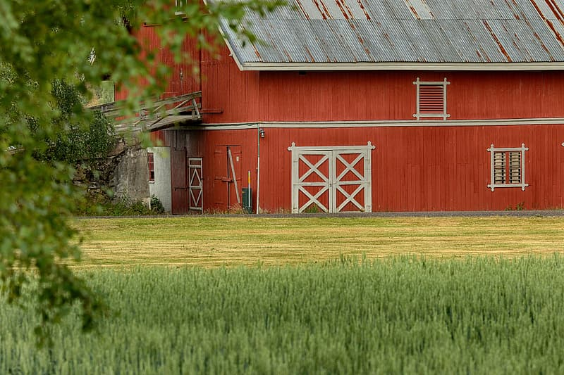 Red barn house on green grass field during daytime