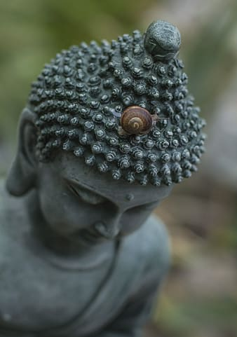 If thoughts come, dont say they should not come. Let them come!  And the same way they come, they will also go..., gray Buddha statue