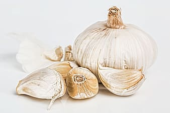 White garlic bulbs