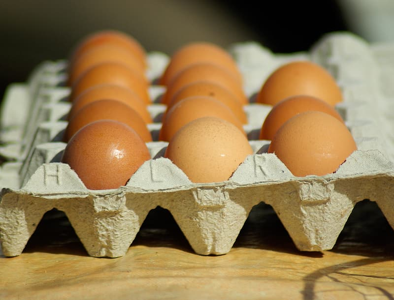 Brown eggs in the tray