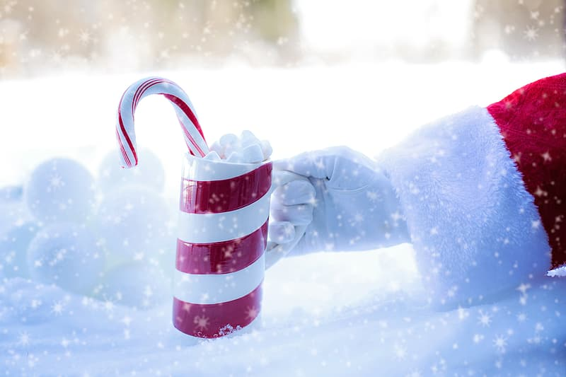 Person holding red and white striped mug with candy cane
