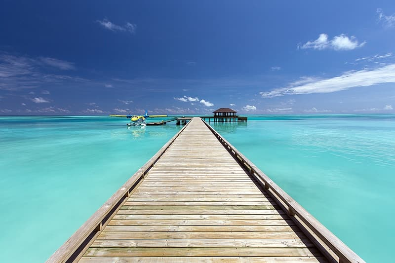 Brown wooden dock surrounded by sea