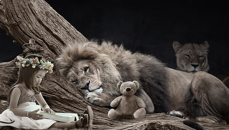 Grayscale photography of lion beside teddy bear and girl reading book