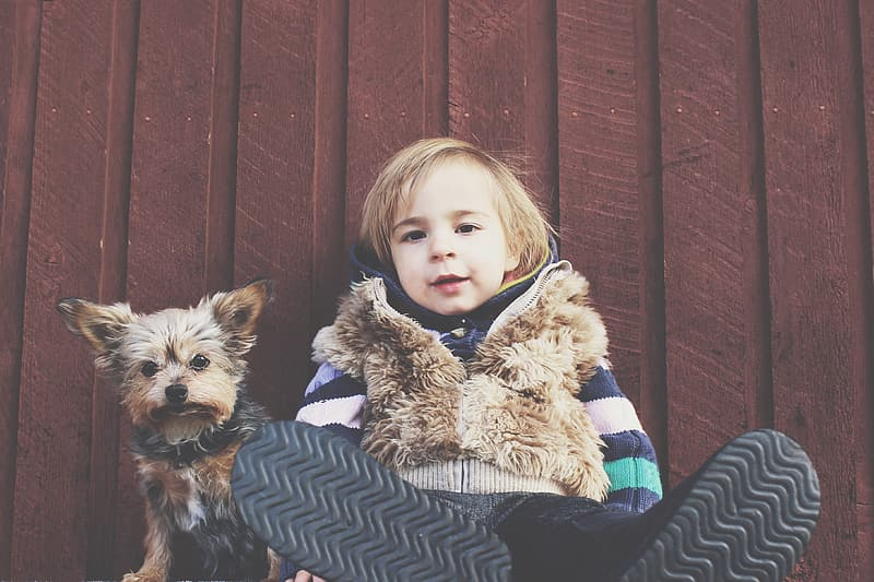 Boy and Yorkshire terrier puppy leaning on red fence