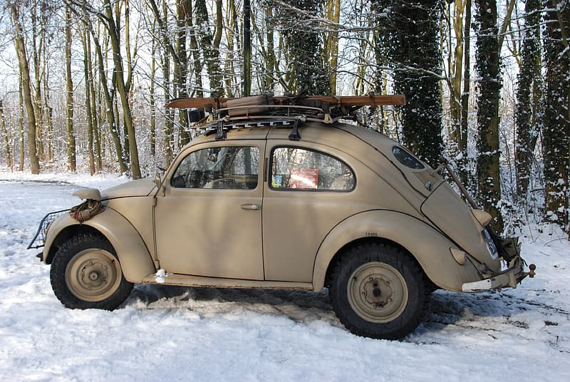 Parked gray Volkswagen Beetle coupe near on forest trees