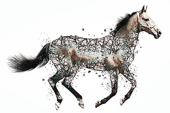Photo of brown and black horse with arts paint