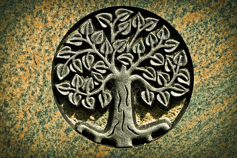 Tree of life engraved graphic photo