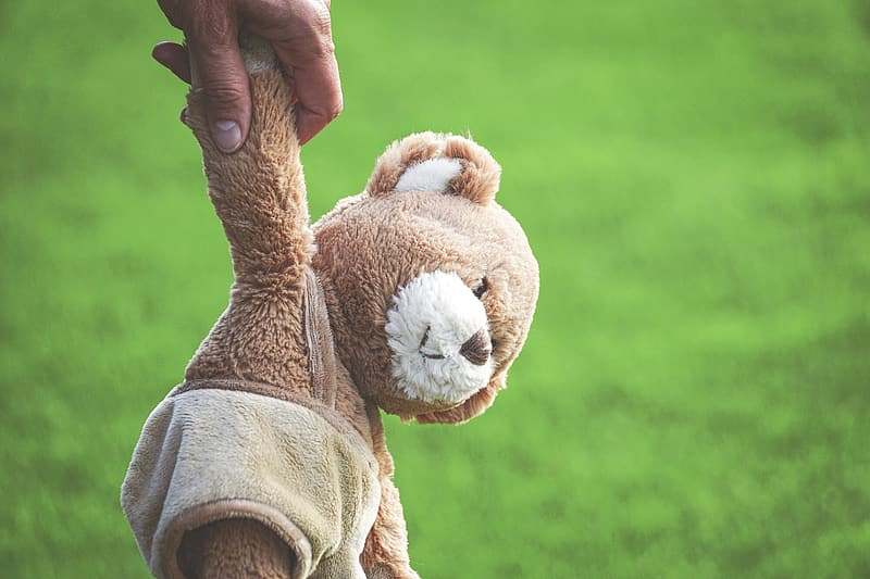 Brown teddy bear on persons hand