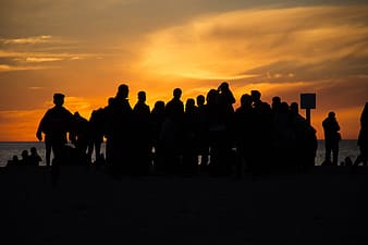 Silhouette of group of people facing body of water during golden hour