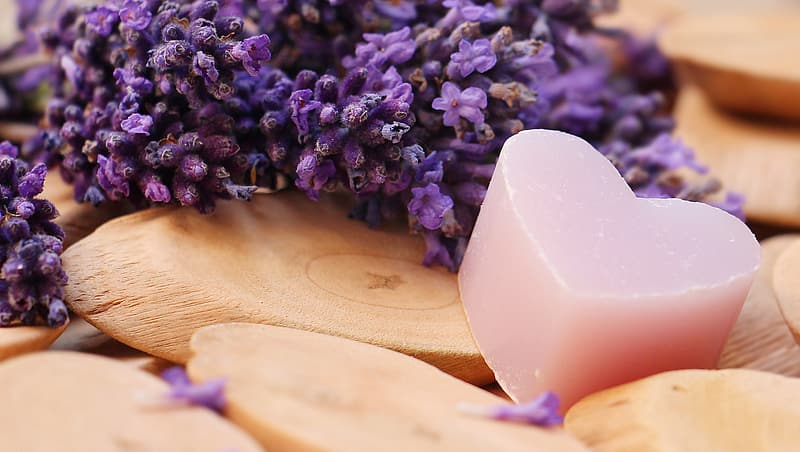 Depth of field photography of pink heart soap beside lavender flowers