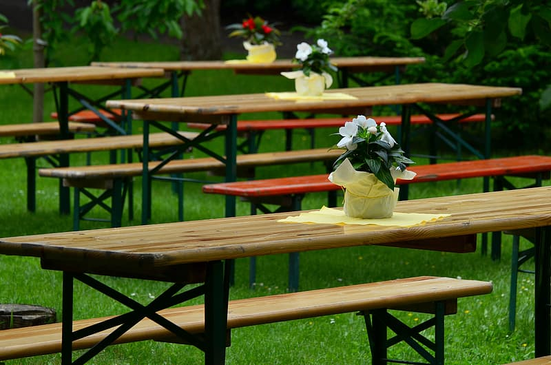 Brown wooden picnic tables near green leaf plants during daytime