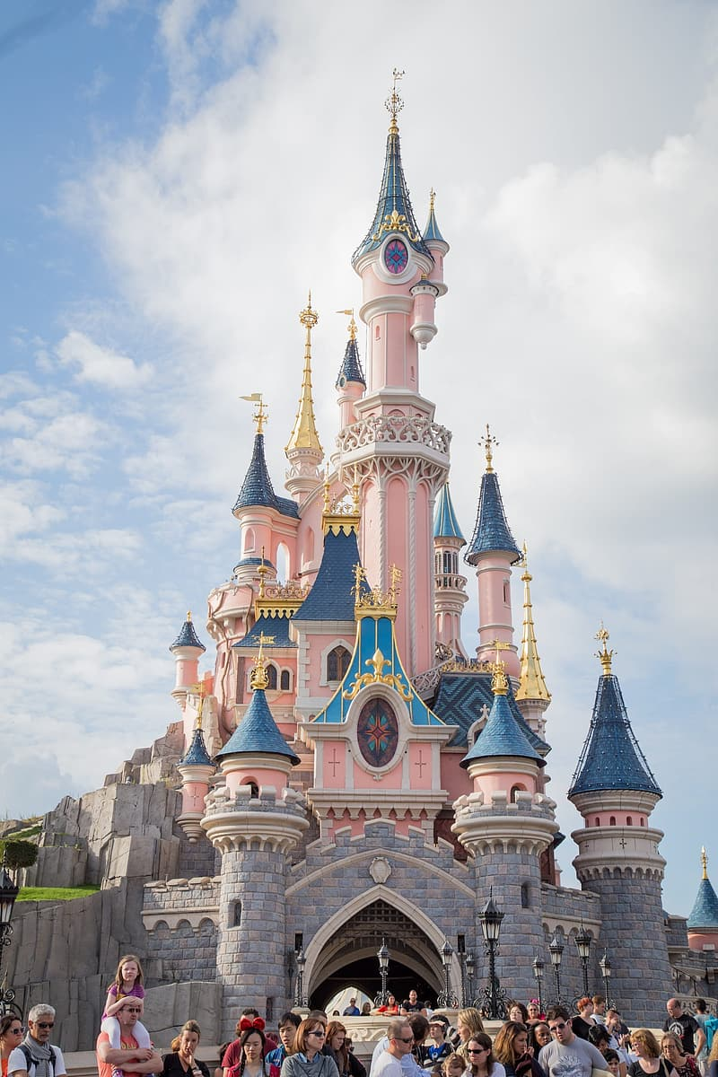 Pink paint castle during daytime