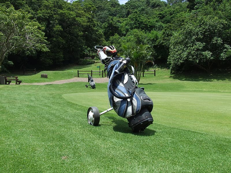 blue-and-white-golf-bag.jpg