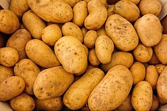 Photography of brown potatoes