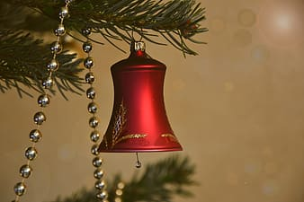 Red bell hanging on brown tree