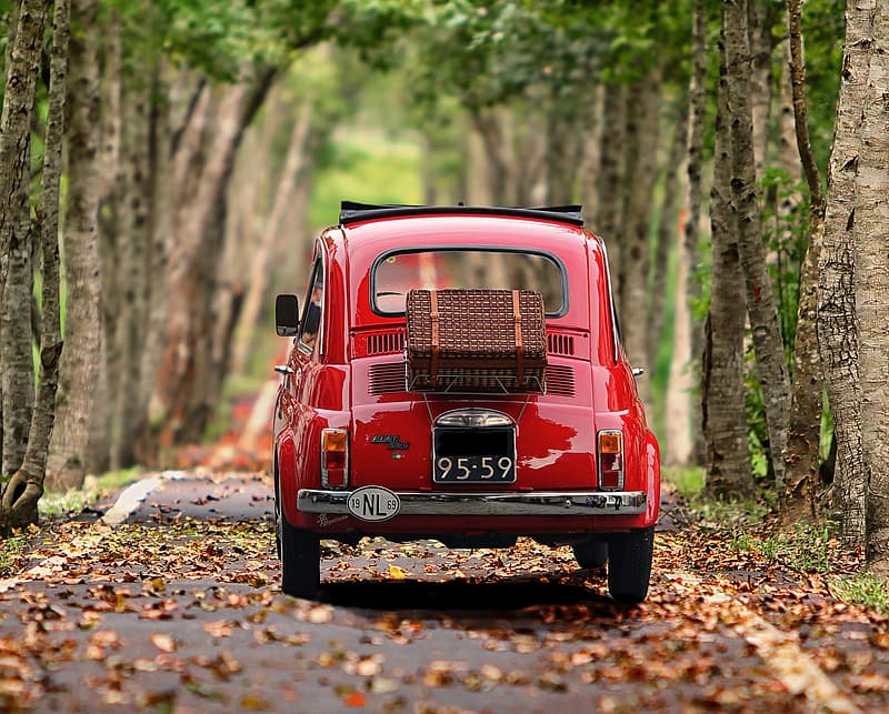 Red car in the woods during daytime