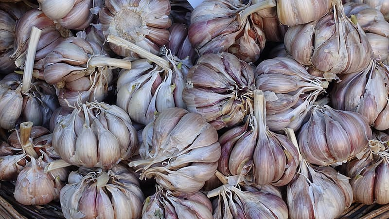Brown garlic on brown wooden table