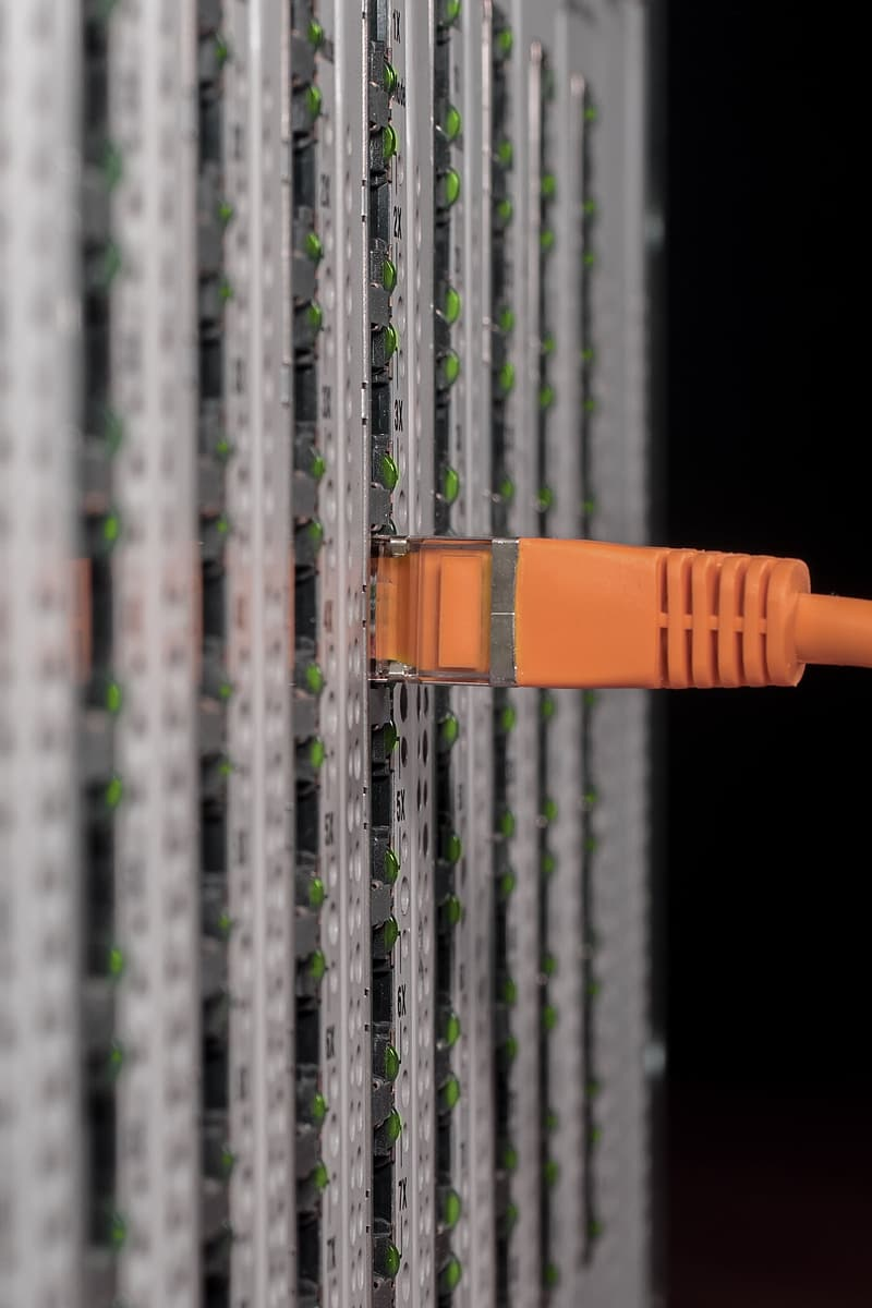 Orange UTP cable in close-up photography