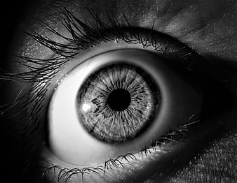 Grayscale photo of human eye