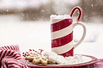 White and red striped mug and marshmallows on plate