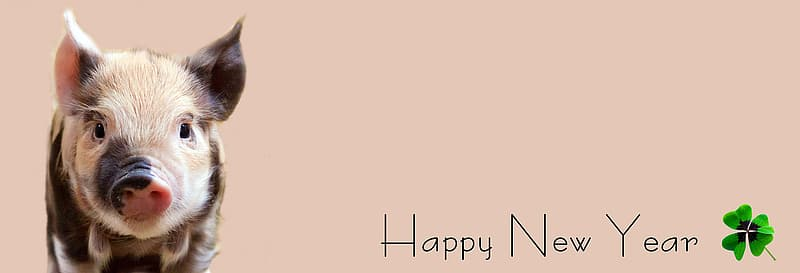 Brown and beige piglet with happy new year text overlay