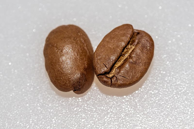 Two coffee beans on white surface