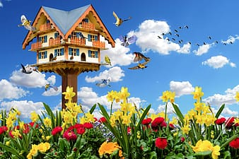 Brown and white wooden bird house on red flower field under blue and white sunny cloudy