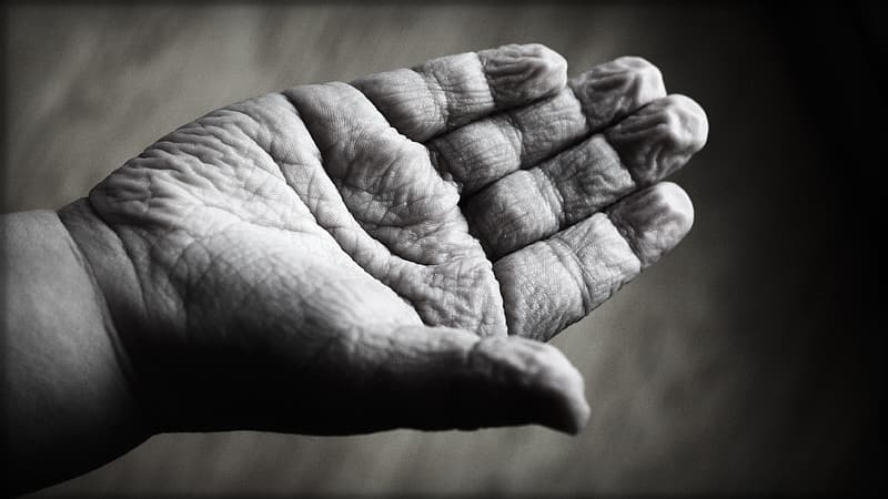 Right human palm in grayscale photography