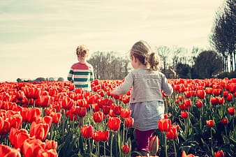Girl in gray jacket standing surrounded by red petaled flower
