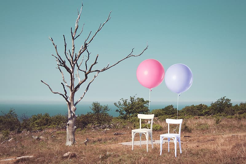 Two white armless chairs with pink and purple balloons