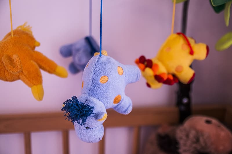 Baby's assorted color hanging animal activity center