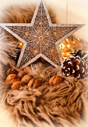 Gold star ornament on brown and white textile
