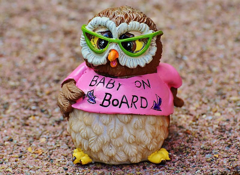 Brown and beige owl wearing pink baby on board shirt ceramic figurine