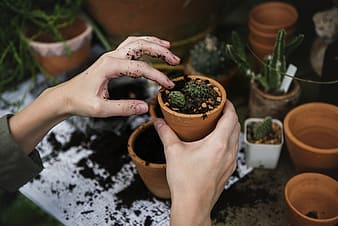 Person holding brown garden pot