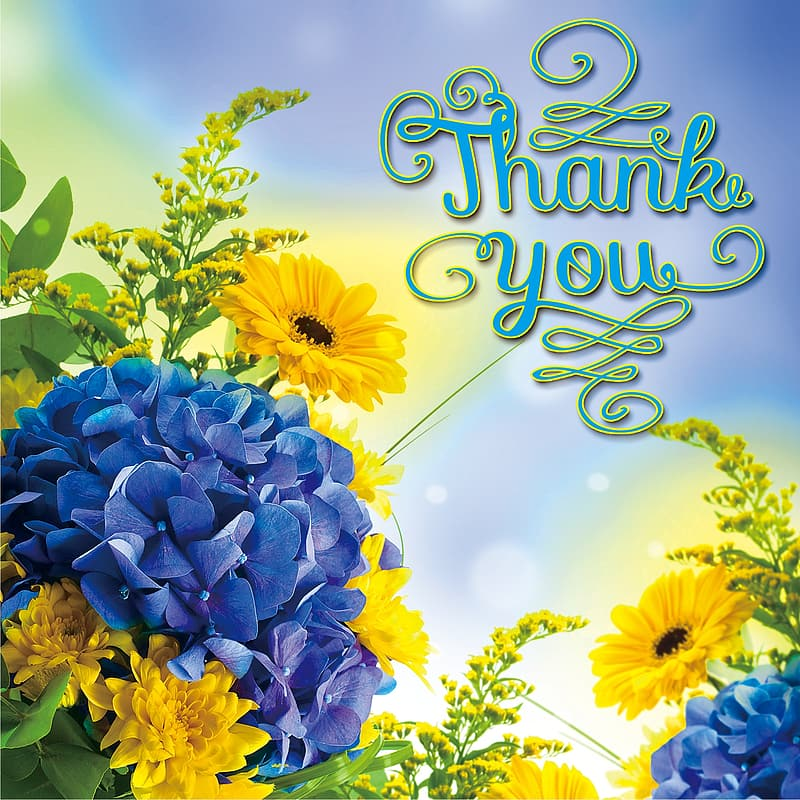 Assorted-color petaled flowers with thank you text overlayu