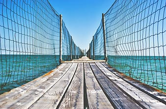 Brown wooden dock with net