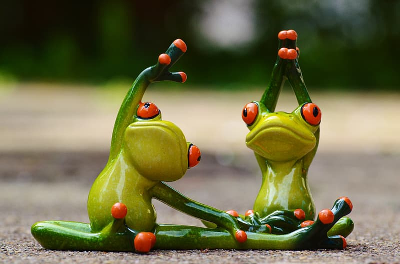 Green tree frogs doing yoga