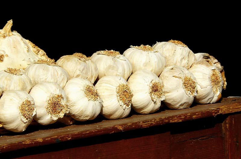 Garlic on brown wooden table