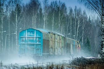 Blue train traveling beside forest