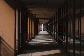 Brown wooden hallway with lights turned on during daytime