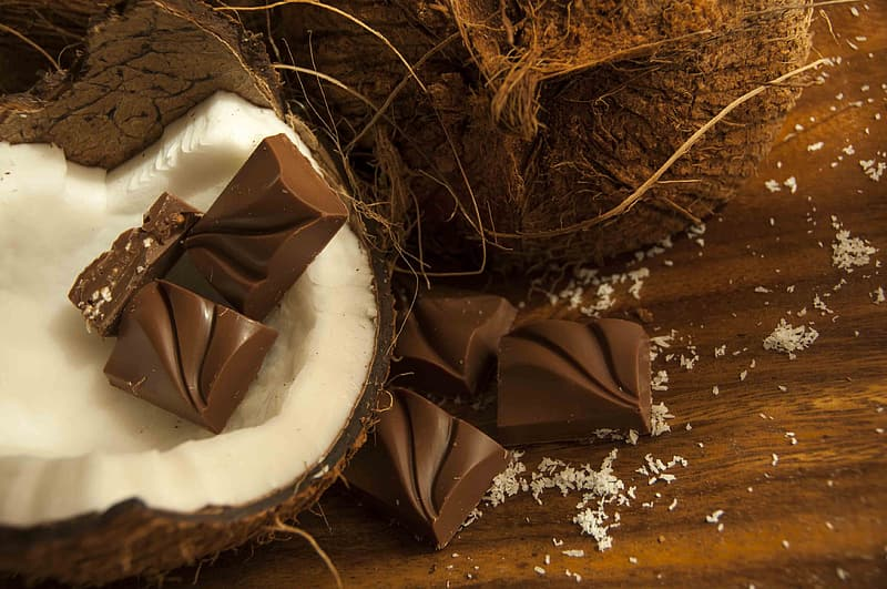 Brown chocolate bars on white coconut shell