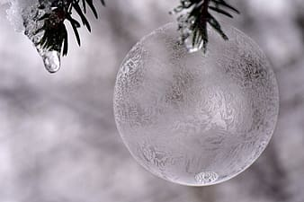 Silver bauble on christmas tree