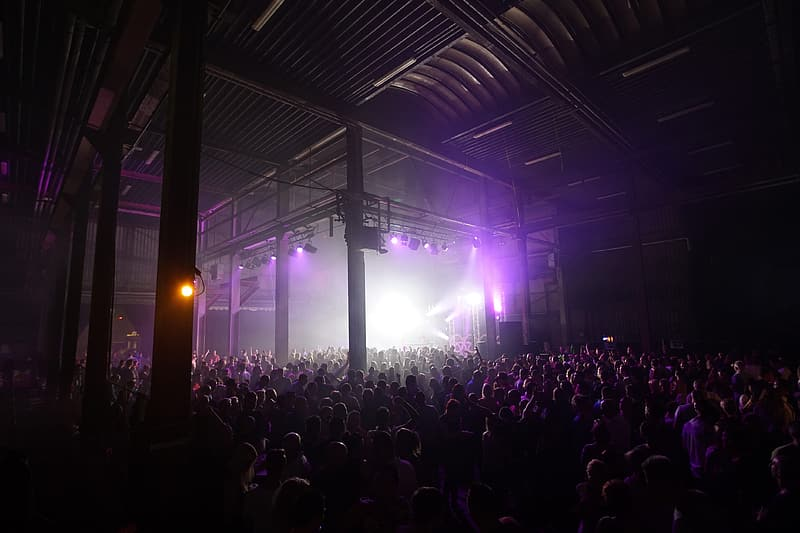 Crowd of people at a music concert party