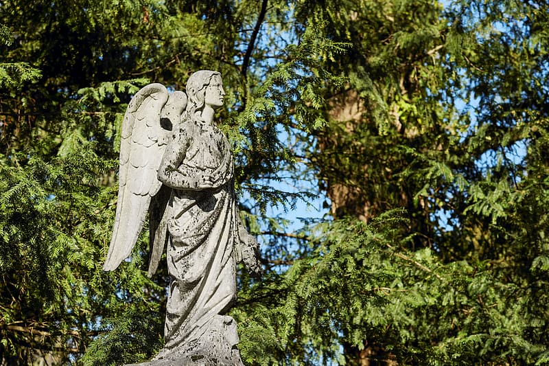 Angel concrete statue near green tree during daytime