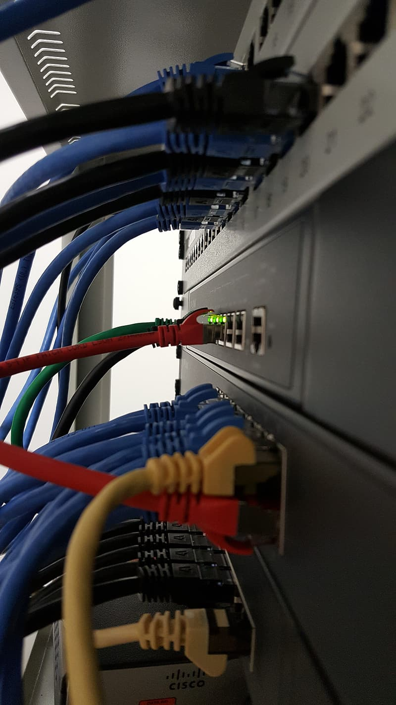 Internet cables plug-in at network switch