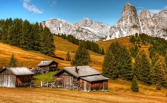 Photography of brown cabin near trees and mountain during daytime